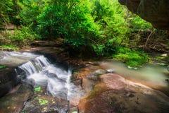 Wasserfälle, die vom Wald fließen Stockfoto