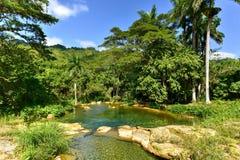 Wasserfälle EL Nicho in Kuba Stockfotos