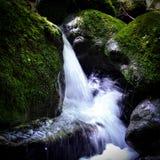 Wasserfälle gesehen während des Wanderns in Pyrenäen Stockbilder
