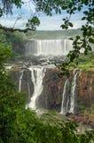 Wasserfälle in Iguazu Stockbilder