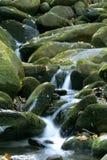 Wasserfälle im gatlinburg Lizenzfreie Stockfotos