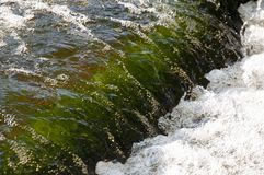 Wasserfälle im Sommer Klares und Süßwasser fallen unten Tönungen von Grünem, von Blauem und von weißem Es gibt graue Steine nach  stockfoto