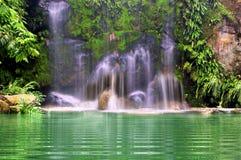 Wasserfälle im Wald Lizenzfreies Stockbild