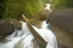 Wasserfälle mit Felsen im Wald Stockfotografie