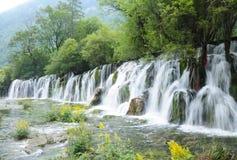 Wasserfälle und Blume Lizenzfreie Stockbilder