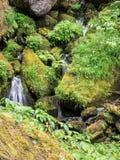 Wasserfälle und moosige Klotz und Felsen Stockfotografie
