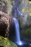 Wasserfälle und moosiger Felsen Stockbild