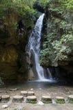 Wasserfälle und Pools Stockbilder