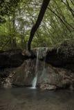 Wasserfälle untergetaucht im Grün eines Waldes lizenzfreie stockfotos