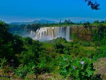 Wasserfall in Äthiopien lizenzfreie stockbilder