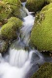 Wasserfall über Moos deckte Felsen ab Lizenzfreies Stockbild