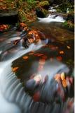 Wasserfall 1 Lizenzfreies Stockbild