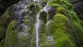 Wasserfall stock video