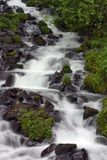 Wasserfall. Lizenzfreie Stockfotografie