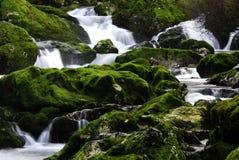 Wasserfall 18 Lizenzfreies Stockbild