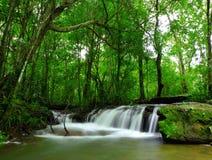 Wasserfall. Lizenzfreies Stockbild