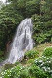 Wasserfall in Achada Nordeste auf Sao Miguel, Azoren Lizenzfreie Stockfotografie