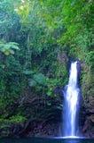 Wasserfall Afu Aau Lizenzfreie Stockfotos