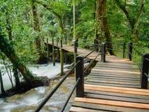 Wasserfall an als Nationalpark Krabi Thailand Bok Khorani Lizenzfreies Stockbild