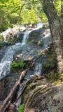 Wasserfall auf baufälligem Stockfoto