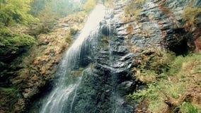 Wasserfall auf einem Felsen in einem Wald unter den Bäumen stock footage