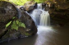 Wasserfall auf Gebirgsfluss mit Klippen Stockfotos