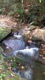 Wasserfall auf glatten roocks Lizenzfreies Stockbild