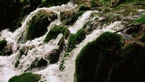 Wasserfall auf grünem Moos in der Zeitlupe stock video footage
