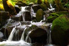 Wasserfall auf Kauai Stockfotos