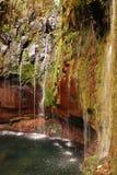 Wasserfall auf Madeira Lizenzfreie Stockfotografie