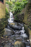 Wasserfall auf Madeira Lizenzfreies Stockfoto