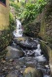 Wasserfall auf Madeira Lizenzfreies Stockbild