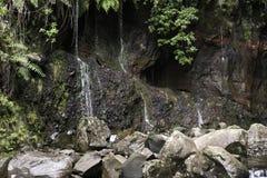 Wasserfall auf Madeira-Insel 25 fontes Stockfotografie