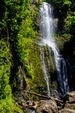 Wasserfall auf Maui Stockbilder