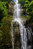 Wasserfall auf Maui Stockfoto