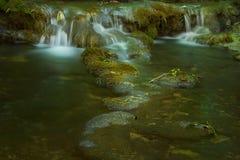Wasserfall auf moosigem Hintergrund Stockbild