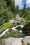 Wasserfall auf Paradies-Fluss Stockfoto