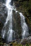 Wasserfall auf Routeburn-Bahn in Nationalpark Fiordland Stockbilder