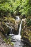 Wasserfall bei Ingleton, North Yorkshire, Großbritannien lizenzfreies stockbild