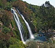 Wasserfall bei Israel Stockfotografie
