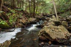 Wasserfall bei Ricketts Glen State Park im Herbst Stockbilder