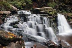 Wasserfall bei Ricketts Glen State Park im Herbst mit schönen Blättern im Vordergrund Stockbild