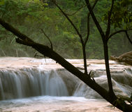Wasserfall Cascadasde Agua Azul Stockfotografie