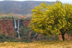 Wasserfall d'Ouzud Lizenzfreie Stockbilder