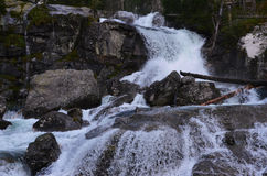 Wasserfall in den hohen tatras Lizenzfreie Stockbilder