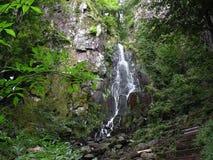 Wasserfall in den Vosges Stockbild