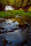 Wasserfall in den Wald Lizenzfreies Stockfoto