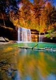 Wasserfall in den Wald Lizenzfreies Stockbild