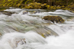 Wasserfall, der über goldenen Felsen hetzt Stockbilder