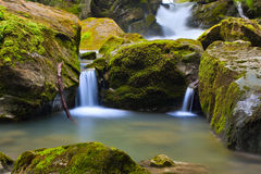 Wasserfall in der grünen Natur Lizenzfreies Stockfoto